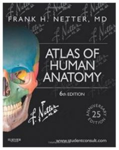 Best anatomy books for medical students — CrushMedSchool