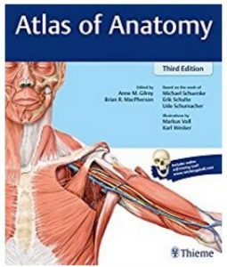 Thieme - Best anatomy books for medical students